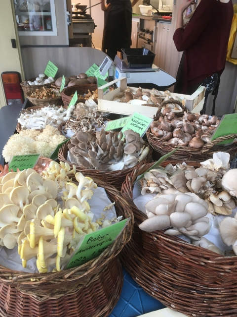 Mushrooms from Germany